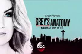 Greys Anatomy season 13...</p></div><div class=